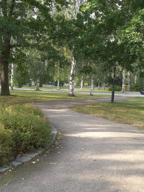Heinola Travel Poppelista Piilipuuhun - Puutarinoita Heinolan kaupunkipuistossa Heinola