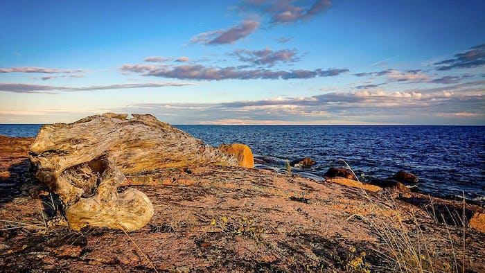 Suomenlahden saaristoluonto